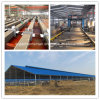 Super Herdsman Steel Frame Poultry Farm and House Construction