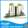High Quality Outdoor Body Fitness Equipment (QL14-239E)
