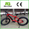 Aluminium 6061 Frame Ebike 48V 350W High Power Fat Tyre Electric Bike