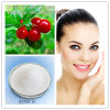 Arbutin 99% Purity Raw Material 497-76-7 for Cosmetics