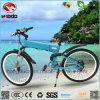 Electric Mountain E Bike MTB Scooter with Good Quality