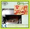Olive Fruit Seed Remove Machine