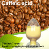 Factory Supply High Quality Caffeic Acid with Copetitive Price