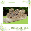 Natural Incense Sticks for Home Fragrance Reed Diffuser