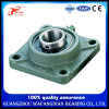 Pillow Block Bearing China Supplier Stainless Steel Ucf201 Ucf202 Ucf203 Ucf204 Ucf205 Ucf206 Ucf207