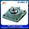 Pillow Block Bearing China Supplier Stainless Steel Ucf201 Ucf202 Ucf203 Ucf204 Ucf205 Ucf206 Ucf207