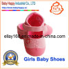 Fashion Baby Shoes (BH-GB061)