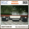 Synthetic Wicker Furniture/Outdoor Furniture Set / Furniture (SC-B6018-F)