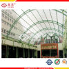 Polycarbonate Sheet/ Plastic Skylight Shades/ Solid Sheet/ Hollow Sheet (PC 003)
