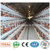 Long Service Life Wire Mesh Layer Cages