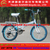 "Tianjin Gainer 20"" Folding Bicycle with Fashionable Design"