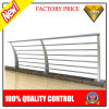 Customized Stainless Steel Fencing Design