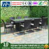 Outdoor Diner Sets Gardon Furniture Sets Chairs 9PCS (TG-8074)