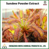 Natural Sundew Powder Extract with Extract Ratio 5: 1, 10: 1,
