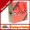 Custom Logo Printed Gift Paper Bag for Shopping (3224)