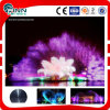 Outdoor Music Fountain Projector Movie Screen Water Fountain