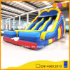 Used Commercial Two-Path Corloful Inflatable Slides (AQ09119-1)