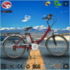 250W Good Quality Electric City Road Bike with Rear Rack for Adult