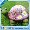 a Cute Turtle on The Lawn Graden Decoration