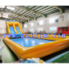 Amusement Park Inflatable Water Slide with Pool/Inflatable Water Park Games