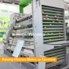A type automatic poultry layer farming equipment Cage farming for layer