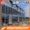 Commercial Steel Frame/ Aluminum Profile Polycarbonate Sheet Greenhouse for Fruit