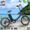 250W Electric Folding Bike En15194 Bicycle for Child