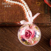 Handmade Natural Dried Flower Gift for Decoration