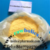 Buy Trenbolone Enanthate Injectable Steroids