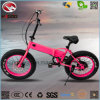 En15194 250W Fat Tire Folding Beach Bike with Good Quality