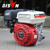 Bison (China) Factory Price BS160 Ohv Structure Air-Cooled Universal Shaft Recoil Start Samll Gasoline Engine