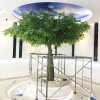 Indoor Evergreen Artificial Banyan Ficus Tree