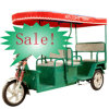 High Quality Electric Passenger Rickshaw on Promotion (DCQ300K-02L)