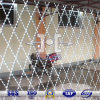 Diamond Opening Hot DIP Galvanized Welded Razor Wire Fence