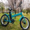 "En15194 Approved 20"" 48V Folding Ebike with Fat Tyre"