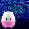 Creative 4 in 1 Pig Star Sky Desk Lamp Night Light Projectror