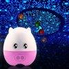 Creative 4 in 1 Pig Star Sky Desk Lamp Night Light Projectror