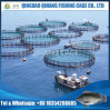 Fish Farming Equipment Aquaculture Fish Cage for Sea Bream