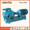 Yonjou Progressive Cavity Bitumen Pump