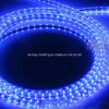 Super Brightness 110V Flexible LED Strip Light