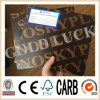 Qingdao Gold Luck Film Faced Plywood Wooden Formwork