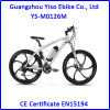 Best Selling Mountain Style Electric Bicycle with Bafang Swxh Rear Powered Motor
