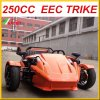 Trike Roadster Ztr 250cc Trike 300cc Trike Scooter Three Wheels Bicycle for Ddults