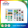 Good Quality Color Card for Decoration Coating