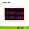 SMD LED Plant Light 450W Full Spectrum Hydroponic Grow Light