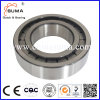 Double Row Cylindrical Roller Positioning Bearing (SL01 4912 - SL01 4980)