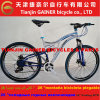 "Tianjin Gainer 26"" Full Suspension MTB Bicycle 21s"