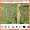 Electric Galvanized or Hot DIP Galvanized Barbed Wire (XM-BW)