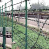Galvanized / PVC Coated Barbed Wire for Sale