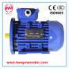 CE Approved Electric Three Phase Asynchronous Motor (1HMA-712-4-0.37)